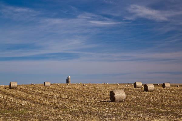 Hayfields on Central Iowa Farm