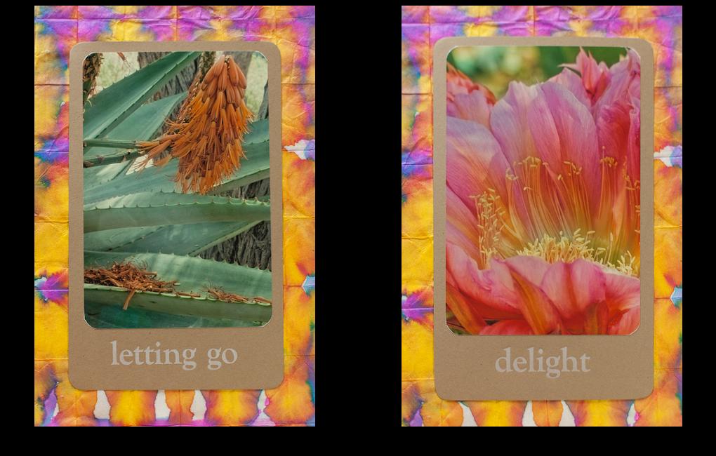 wisdom-cards-panel2