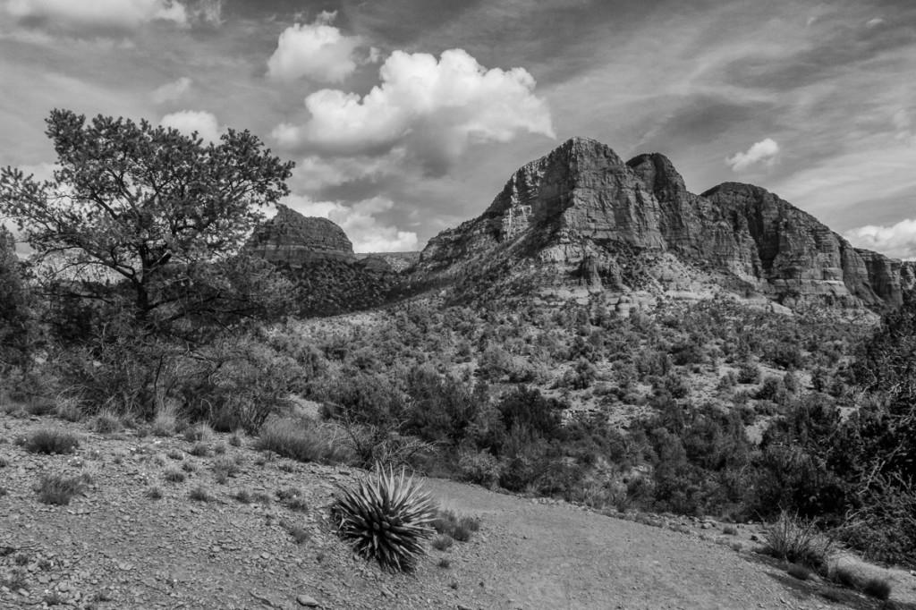 Trailhead © 2014 Bo Mackison
